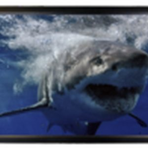 Mustang Av Sc F135cw169 Wall Projection Screen