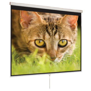 43 Manual Pull Down Projection Screen 100 Nominal Diagonal