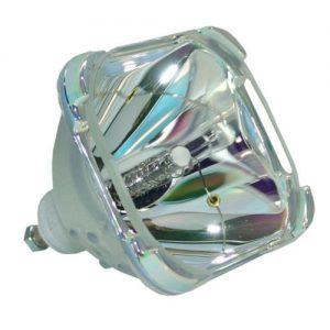 Sim2 Z930100320 Projector Lamp Module