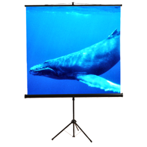 11 Portable Tripod Projection Screen 84w X 84h Screen Size