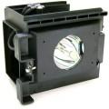 Samsung SP61L6HX Projection TV Lamp Module
