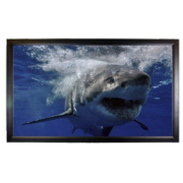 Mustang Av Sc F106cw169 Wall Projection Screen