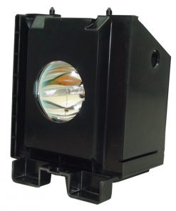 Samsung 01 0100 Projection Tv Lamp Module
