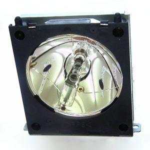 Liesegang Dv300 Projector Lamp Module