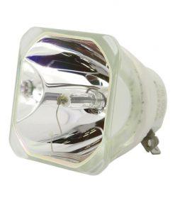 Ushio Lmph260 Projector Lamp Bare Bulb 1