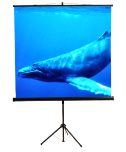 "1:1 Portable Tripod Projection Screen, 84""W x 84""H Screen Size"